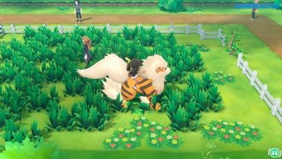 Pokémon: Let's Go Pikachu - Gameplay español Montura Arcanine