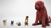 Clifford The Big Red Dog - First Look