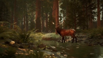 Archer: The Witch's Wrath - Gameplay Teaser