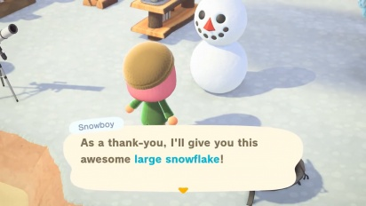Animal Crossing: New Horizons - January Update